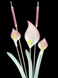 Lillies e cattails di vetro fotografie stock