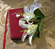 Lillies on a red Bible on gold Royalty Free Stock Photography