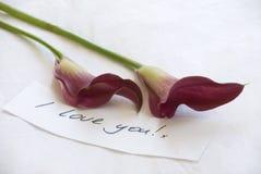 Lillies rouges rosâtres renversants avec un amour manuscrit Image stock