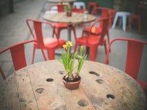 Lillies su una tavola nella via Fotografie Stock