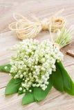 Lilly του μπουκέτου λουλουδιών κοιλάδων Στοκ Εικόνες