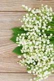 Lilly του μπουκέτου λουλουδιών κοιλάδων Στοκ Εικόνα