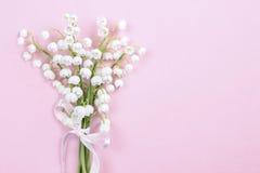 Lilly av dalen blommar på ljus rosa bakgrund Fotografering för Bildbyråer