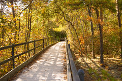 Lilly Bluff Boardwalk. The boardwalk at Lilly Bluff overlook, Obed Wild and Scenic River Royalty Free Stock Images