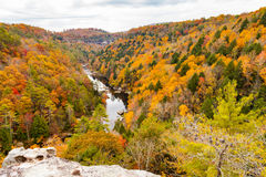Lilly Bluff Overlook at Obed. View from Lilly Bluff Overlook at Obed Wild and Scenic River Stock Image