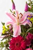 Lilly Blumenanordnung lizenzfreie stockfotos
