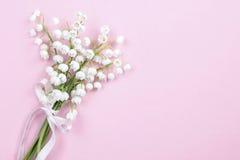 Lilly de la vallée fleurit sur le fond rose lumineux Photos libres de droits