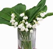 Lilly del ramo de las flores y de las hojas del valle aislado en blanco imágenes de archivo libres de regalías