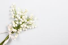 Lilly del valle florece, espacio de la copia Foto de archivo libre de regalías
