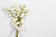 Lilly del valle florece, espacio de la copia Imagen de archivo libre de regalías