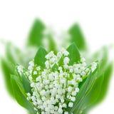 Lilly della fine del bouquet della valle su Immagini Stock Libere da Diritti