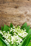 Lilly della valle su legno Fotografia Stock