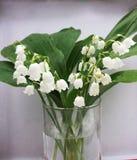 Lilly dolina liści i kwiatów bukiet odizolowywający na bielu Obraz Stock