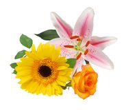 The lilly floral arrangement. Background Royalty Free Stock Image