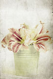 Lilly flowers in a bucket Royalty Free Stock Photo