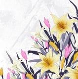 Lilly kort stock illustrationer