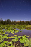 Lilly Lake Wasatch Star Trails Royalty Free Stock Photos