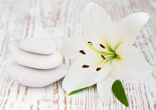 Lilly and massage stones Royalty Free Stock Photography
