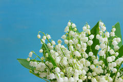 Free Lilly Of The Valley Royalty Free Stock Images - 86321789