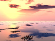 Lilly Pad湖3 免版税图库摄影
