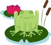 Lilly Pad Frog Royalty Free Stock Photo