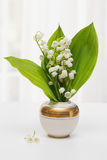 Lilly of the Valley Royalty Free Stock Photos