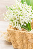 Lilly of the valley bouquet Royalty Free Stock Images