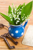 Lilly of the valley bouquet Stock Photography