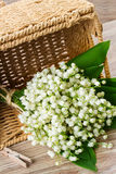 Lilly of the valley bouquet Stock Images