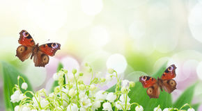 Lilly of valley. Bunch of Lilly of valley close up in garden with butterflies banner Stock Photo