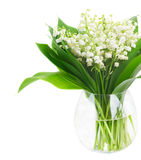 Lilly of valley. Bunch of Lilly of valley flowers in glass vase close up  isolated on white background Stock Images