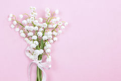 Lilly of the valley flowers on bright pink background. Stock Image