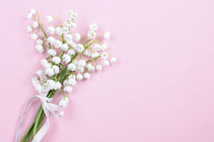 Lilly of the valley flowers on bright pink background. Royalty Free Stock Photos