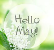 Lilly of the valley flowers close up. On green bokeh background with hello may words Stock Photos