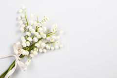 Lilly of the valley flowers, copy space Royalty Free Stock Photo
