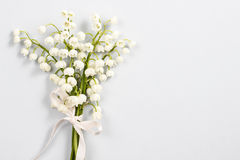 Lilly of the valley flowers, copy space Royalty Free Stock Image