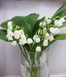Lilly of the valley flowers and leaves bouquet isolated on white. Background Stock Image