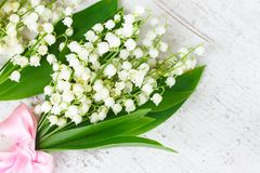 Lilly of the valley flowers. With green leaves close up on white wooden background Royalty Free Stock Photos