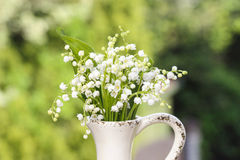 Lilly of the valley flowers in white rustic vase Stock Photo