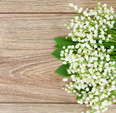 Lilly of the valley posy Royalty Free Stock Photos