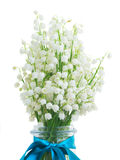 Lilly of the valley posy. Close up  isolated on white background Royalty Free Stock Image