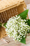 Lilly of the valley posy Stock Photos