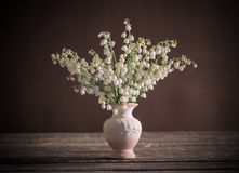 Lilly of valley in  vase Stock Images