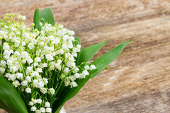 Lilly of valley on wood. Lilly of valley close up on wooden table with copy space Royalty Free Stock Image