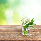 Lilly of valley on wood Stock Photography