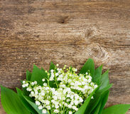 Lilly of valley on wood. Lilly of valley  fresh flowers and leaves close up on wooden table with copy space Stock Image