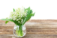 Lilly of valley on wood Stock Photos