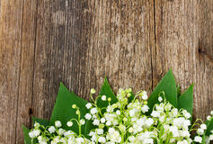 Lilly van vallei op hout Royalty-vrije Stock Foto
