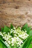 Lilly van vallei op hout Stock Fotografie