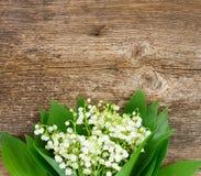 Lilly van vallei op hout Stock Afbeelding